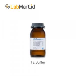 TE Buffer 100x Molecular 1 L